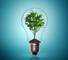 entrepreneurial-growth-in-greener-industries-caption-image[1]